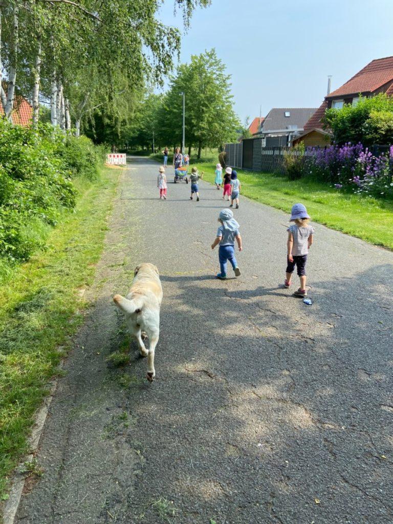 Kinder spazieren mit Hund